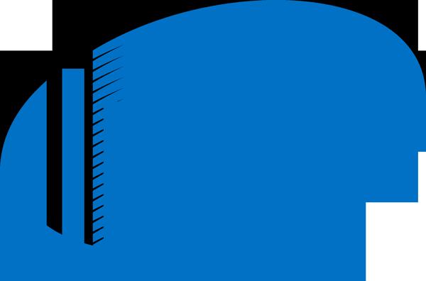 Intel משתתפת בתוכנית